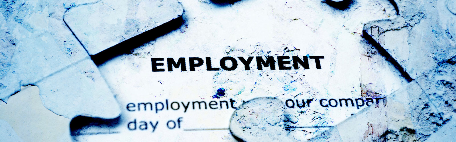 employment law - Middleton Law Ltd